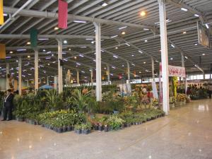 برگزاري چهارمين نمايشگاه گل و گياه ، فضاي سبز و تجهيزات گلخانه اي